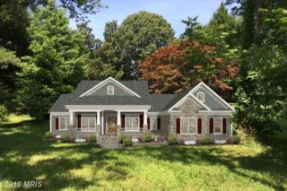 599 Broadwater Way, Gibson Island, MD 21056 (#AA9701041) :: Pearson Smith Realty