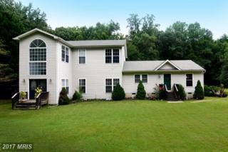 1247 Bacon Ridge Road, Crownsville, MD 21032 (#AA9736985) :: LoCoMusings