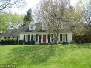 6350 Meadowland Drive, Dunkirk, MD 20754 (#AA9815320) :: Pearson Smith Realty