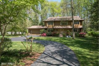 875 Holly Drive S, Annapolis, MD 21409 (#AA9845823) :: Pearson Smith Realty