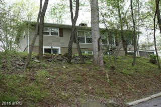 8 Locust Trail, Fairfield, PA 17320 (#AD9652224) :: Pearson Smith Realty