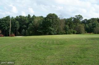195 Pebble Lane, Biglerville, PA 17307 (#AD9757554) :: LoCoMusings