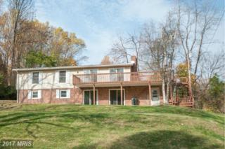 10 Fawn Trail, Fairfield, PA 17320 (#AD9806374) :: Pearson Smith Realty