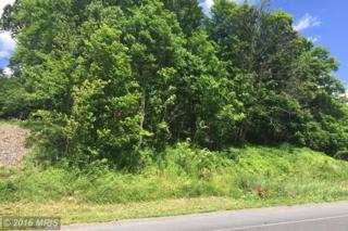 Williams Road Road, Cumberland, MD 21502 (#AL8634006) :: Pearson Smith Realty
