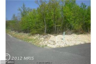 Arrowhead Trail, Cumberland, MD 21502 (#AL8733817) :: LoCoMusings