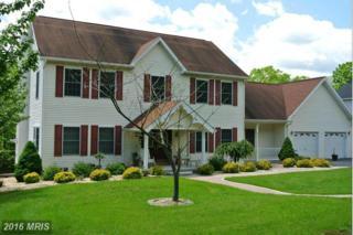 16902 Mountain Club Avenue, Rawlings, MD 21557 (#AL9675302) :: Pearson Smith Realty