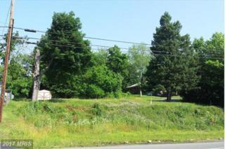 Mcmullen Highway NW, Rawlings, MD 21557 (#AL9759965) :: LoCoMusings