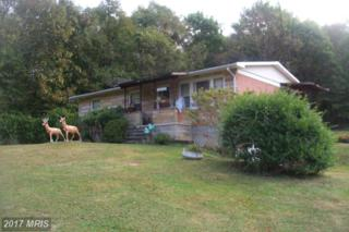 13614 Blank Road NW, Mount Savage, MD 21545 (#AL9805098) :: Pearson Smith Realty