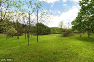 Orwig Road, Freeland, MD 21053 (#BC8582839) :: Pearson Smith Realty