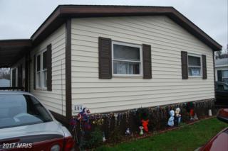 504 Brandyvale Way, Dundalk, MD 21222 (#BC9545387) :: LoCoMusings