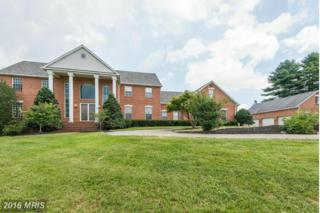 2612 Monkton Road, Monkton, MD 21111 (#BC9689948) :: Pearson Smith Realty