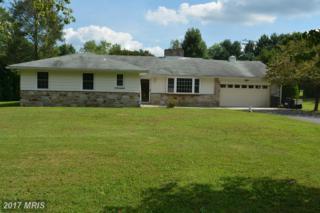 4821 Carroll Manor Road, Baldwin, MD 21013 (#BC9750734) :: Pearson Smith Realty