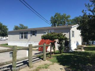 28 Shore Road, Edgemere, MD 21219 (#BC9771924) :: Pearson Smith Realty