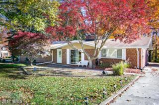 3301 Janellen Drive, Pikesville, MD 21208 (#BC9804947) :: Pearson Smith Realty