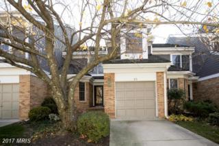 23 Raisin Tree Circle, Pikesville, MD 21208 (#BC9818771) :: Pearson Smith Realty
