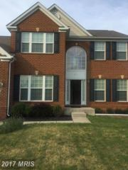 8004 Pink Azalea Court, Baltimore, MD 21244 (#BC9873213) :: Pearson Smith Realty