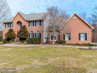 1221 Berans Road, Owings Mills, MD 21117 (#BC9880800) :: Pearson Smith Realty