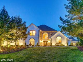 3 Scotts Moore Court, Phoenix, MD 21131 (#BC9905935) :: Pearson Smith Realty
