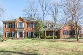 25 Mansel Drive, Reisterstown, MD 21136 (#BC9913427) :: Pearson Smith Realty