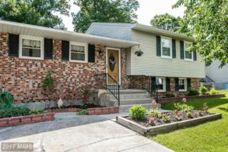 4219 Winterode Way, Baltimore, MD 21236 (#BC9940288) :: Pearson Smith Realty