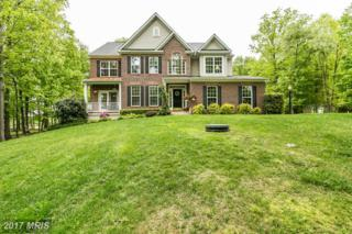 931 Zenith Drive, Freeland, MD 21053 (#BC9943191) :: Pearson Smith Realty