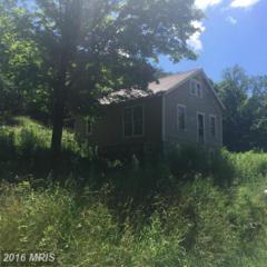 370 Landis Road, Hyndman, PA 15545 (#BD9698557) :: Pearson Smith Realty