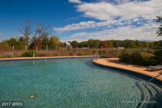 Broomgrass, Gerrardstown, WV 25420 (#BE8485356) :: Pearson Smith Realty