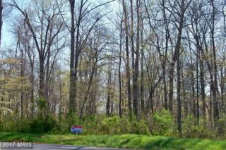 32 Nimitz Lane, Hedgesville, WV 25427 (#BE9627482) :: LoCoMusings
