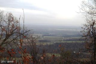 Tuscarora Pike, Martinsburg, WV 25403 (#BE9718580) :: Pearson Smith Realty