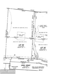 Americana Lane, Hedgesville, WV 25427 (#BE9738821) :: LoCoMusings