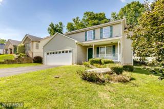 165 Gemstone Drive, Martinsburg, WV 25401 (#BE9747887) :: LoCoMusings