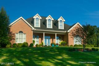 2487 Delmar Orchard Road, Martinsburg, WV 25403 (#BE9754668) :: Pearson Smith Realty