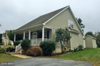 207 Sentry Lane, Martinsburg, WV 25401 (#BE9776282) :: Pearson Smith Realty