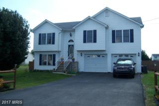 117 Rhoda Drive, Bunker Hill, WV 25413 (#BE9790767) :: Pearson Smith Realty