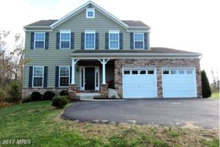 66 Bright Cherry Court, Martinsburg, WV 25403 (#BE9810348) :: Pearson Smith Realty