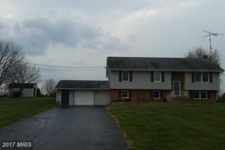 4341 Greensburg Road, Martinsburg, WV 25404 (#BE9811192) :: Pearson Smith Realty
