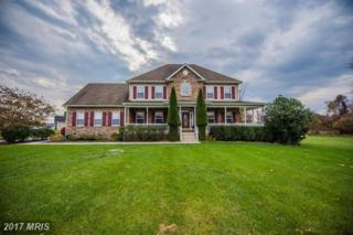 364 Fantasia Road, Inwood, WV 25428 (#BE9816174) :: Pearson Smith Realty