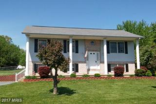 29 Putnam Drive, Inwood, WV 25428 (#BE9842228) :: Pearson Smith Realty