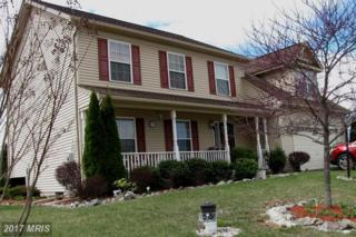81 Aqueduct Avenue, Martinsburg, WV 25404 (#BE9844435) :: Pearson Smith Realty