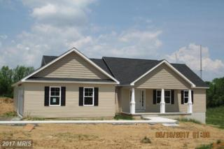 LOT 1 Eiderdown Drive, Martinsburg, WV 25404 (#BE9952147) :: Pearson Smith Realty