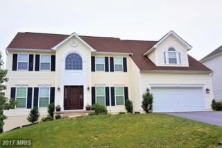 452 Hogan Drive, Martinsburg, WV 25405 (#BE9954359) :: Pearson Smith Realty