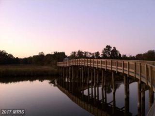 8203 Elm Lane, Chesapeake Beach, MD 20732 (#CA8472444) :: LoCoMusings