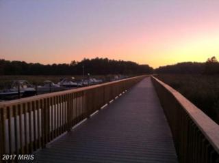 8207 Elm Lane, Chesapeake Beach, MD 20732 (#CA8472465) :: LoCoMusings