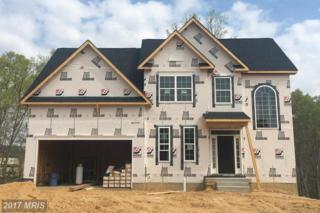 398 Whirlaway Drive, Prince Frederick, MD 20678 (#CA9872409) :: Pearson Smith Realty