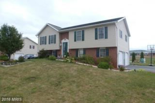 85 Independence Drive, Shippensburg, PA 17257 (#CB9735592) :: Pearson Smith Realty