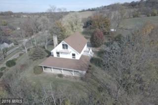 215 Means Hollow Road, Shippensburg, PA 17257 (#CB9804711) :: Pearson Smith Realty