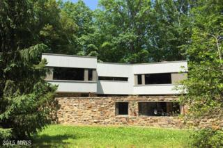 454 Stoney Battery Road, Earleville, MD 21919 (#CC8755640) :: Pearson Smith Realty