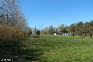 Ragan Road, Conowingo, MD 21918 (#CC9557091) :: Pearson Smith Realty