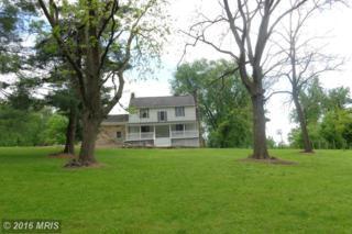 180 Hostettor Lane, Conowingo, MD 21918 (#CC9645373) :: Pearson Smith Realty