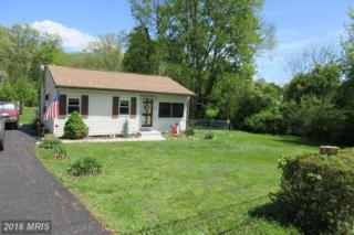92 Middle Road, Elkton, MD 21921 (#CC9651613) :: Pearson Smith Realty